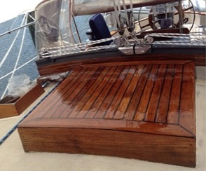 Varnished sea hood.  Pretty pretty!